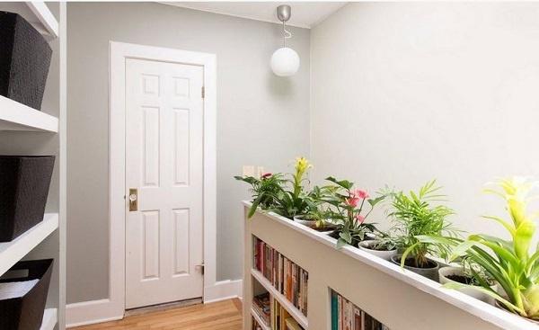 Mang không gian xanh vào nhà của bạn